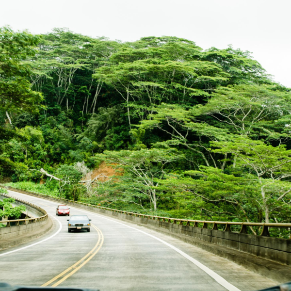 How Hawaii Weather Can Damage Your Auto Paint